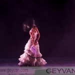 GEYVAN12531_015